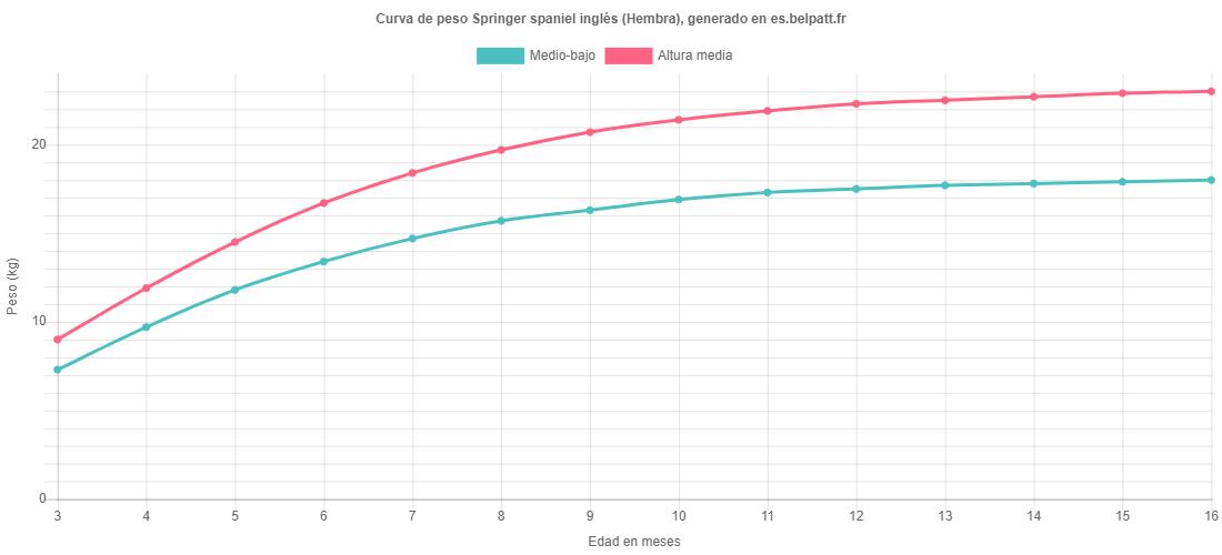 Curva de crecimiento Springer spaniel inglés hembra