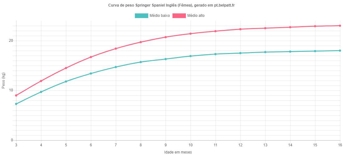 Curva de crescimento Springer Spaniel Inglês fêmea