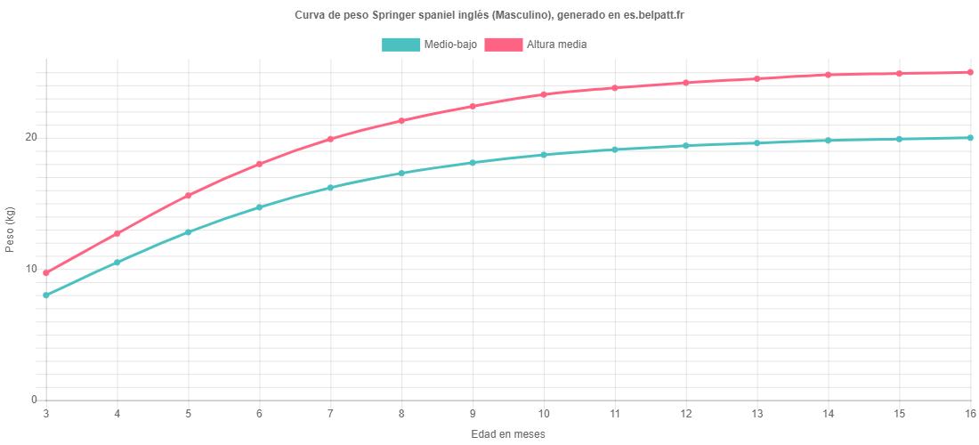 Curva de crecimiento Springer spaniel inglés masculino