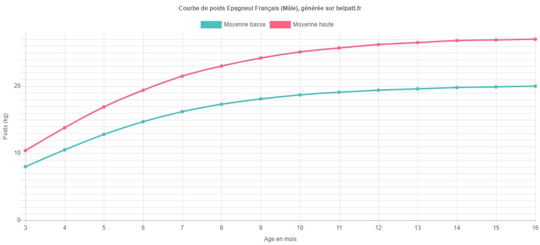 Courbe de croissance Epagneul Français male
