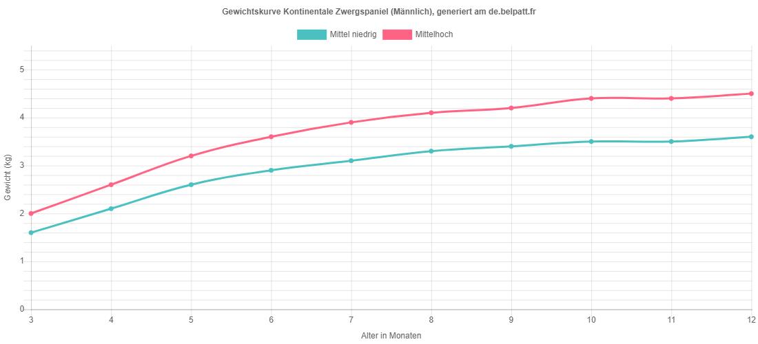 Wachstumskurve Kontinentale Zwergspaniel männlich