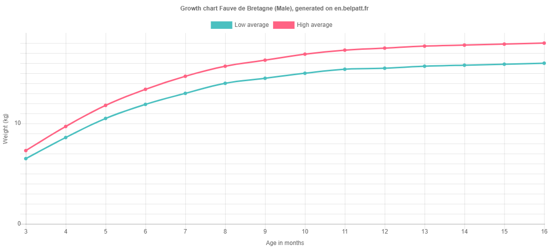 Growth chart Fauve de Bretagne male