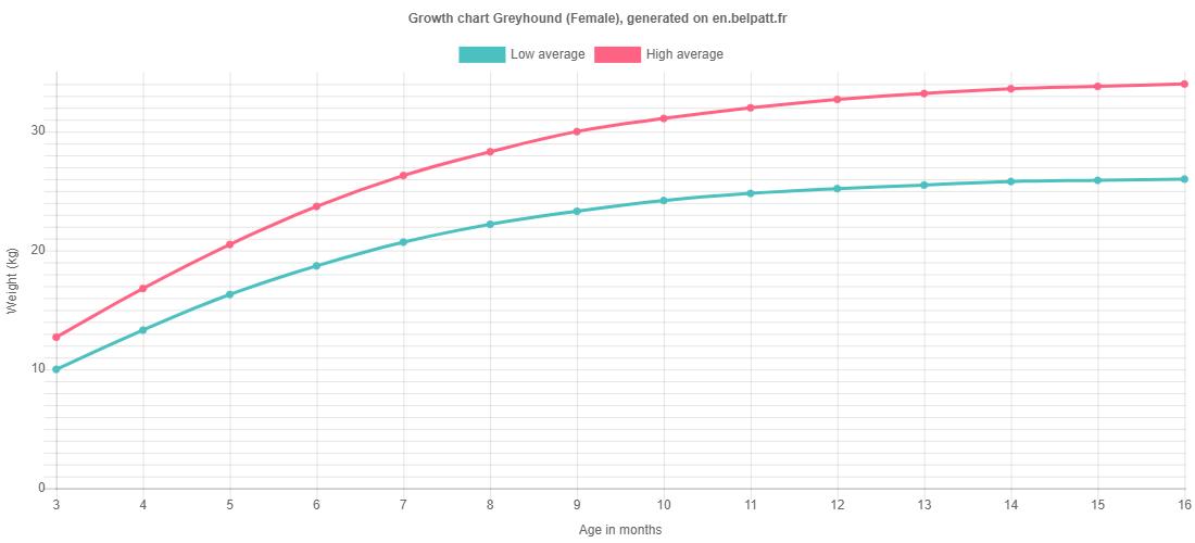 Growth chart Greyhound female