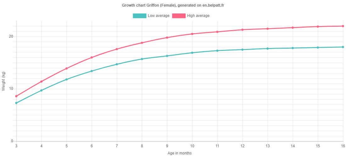 Growth chart Griffon female
