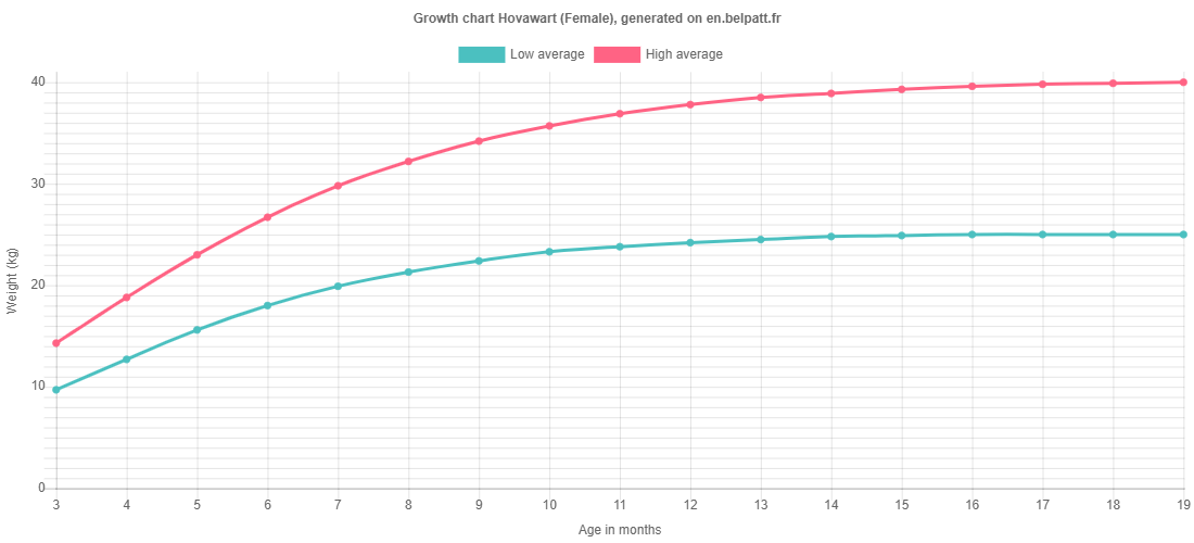 Growth chart Hovawart female
