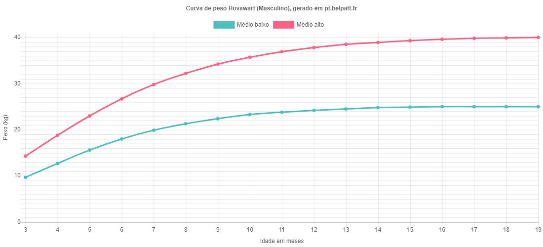 Curva de crescimento Hovawart masculino