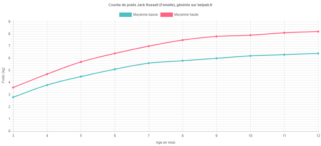 Courbe de croissance Jack Russell femelle