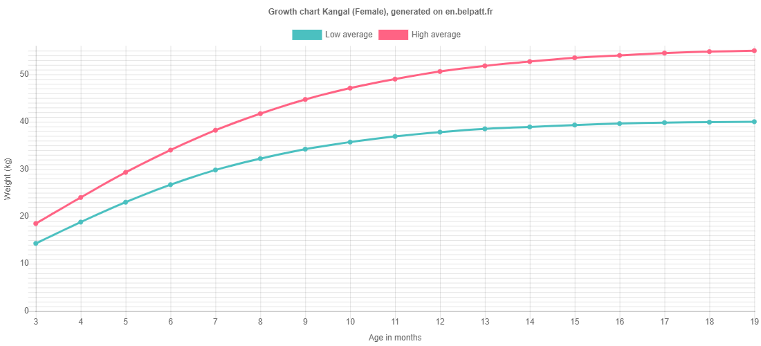 Growth chart Kangal female