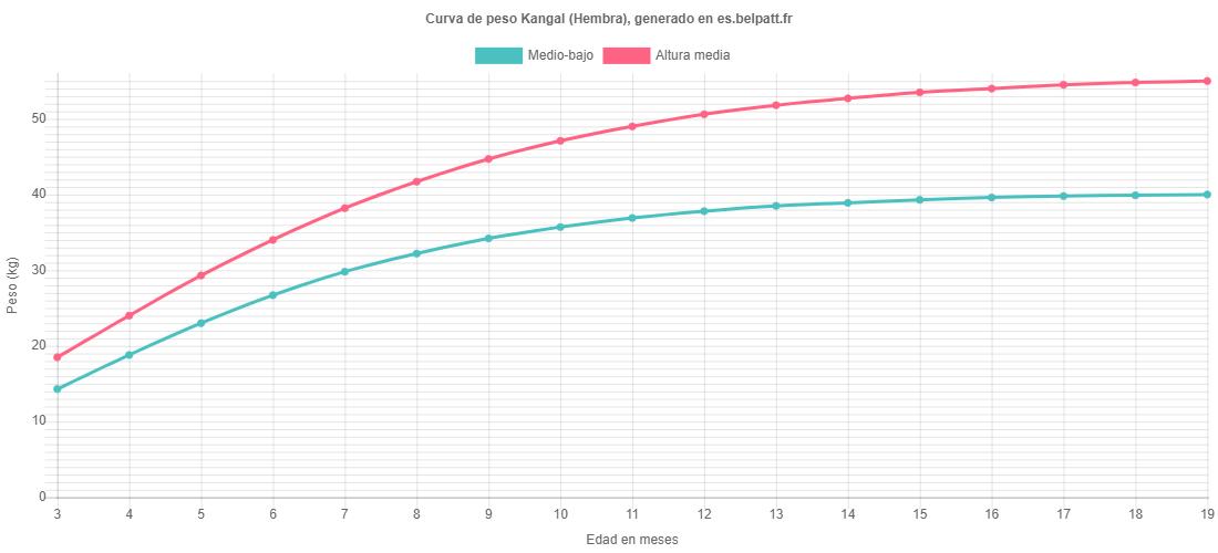 Curva de crecimiento Kangal hembra