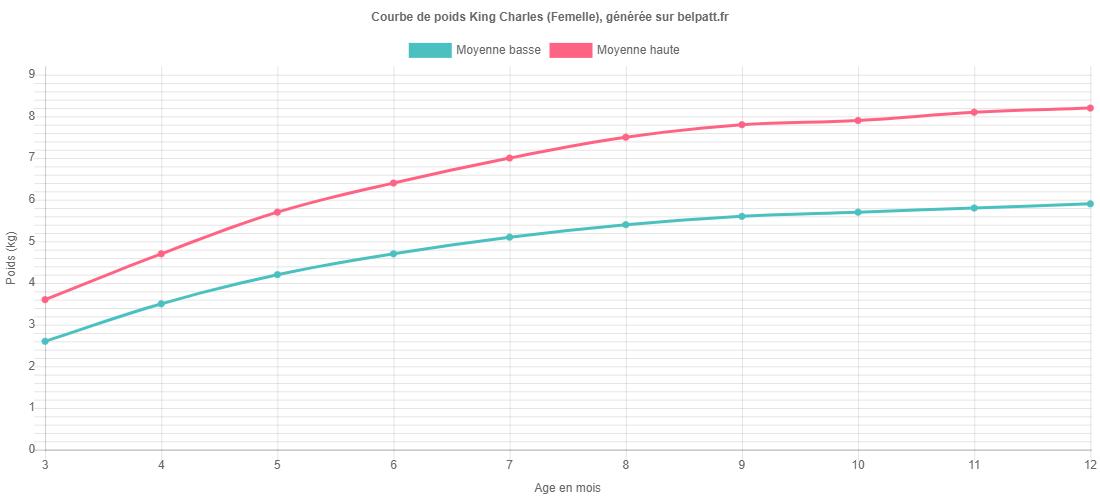 Courbe de croissance King Charles femelle