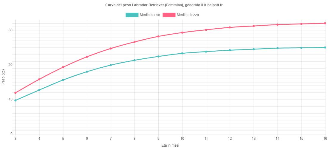 Curva di crescita Labrador Retriever femmina