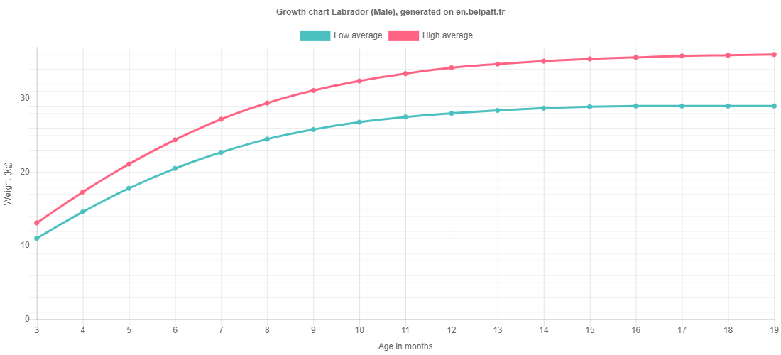 Growth chart Labrador male