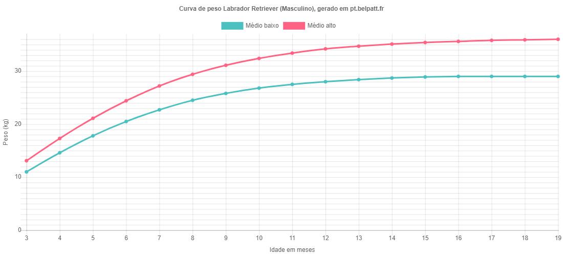 Curva de crescimento Labrador Retriever masculino