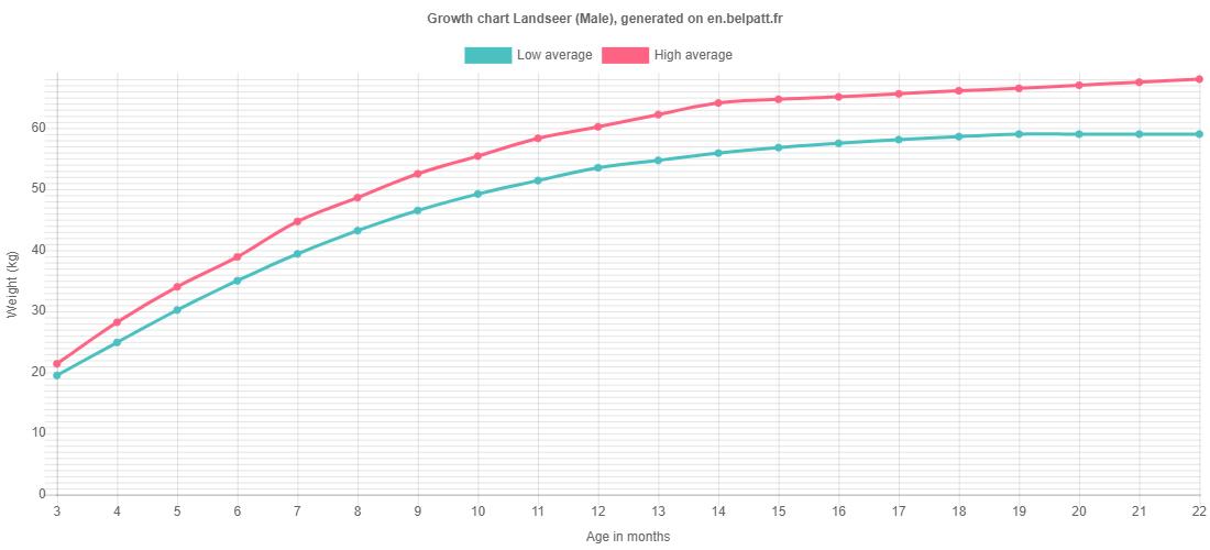Growth chart Landseer male