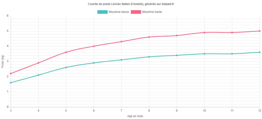 Courbe de croissance Lévrier Italien femelle