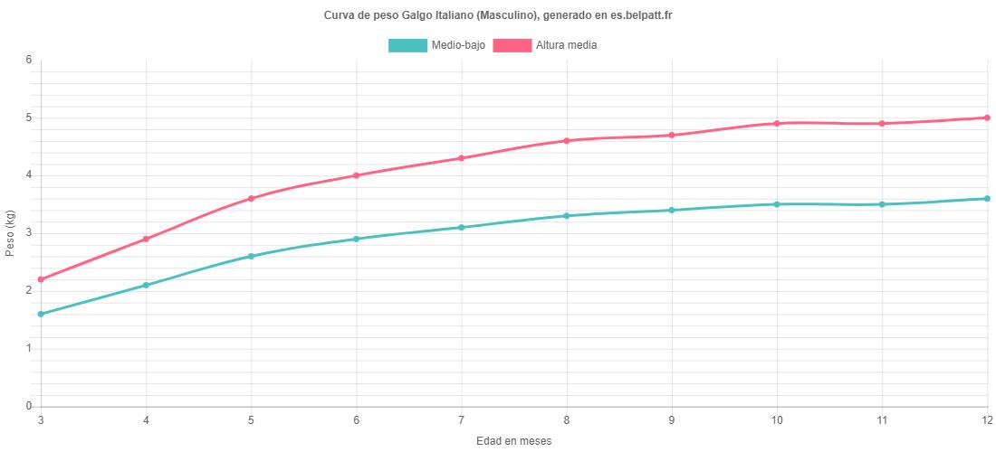 Curva de crecimiento Galgo Italiano masculino