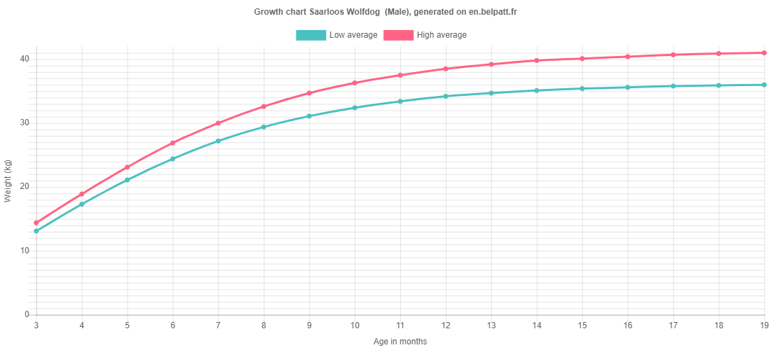 Growth chart Saarloos Wolfdog  male