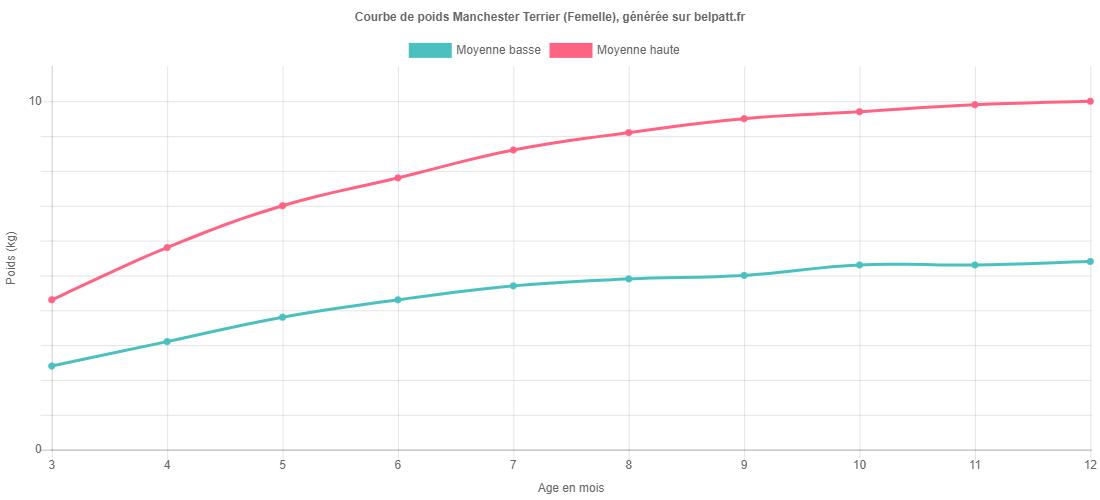Courbe de croissance Manchester Terrier femelle