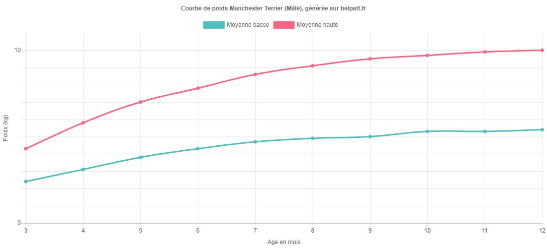 Courbe de croissance Manchester Terrier male