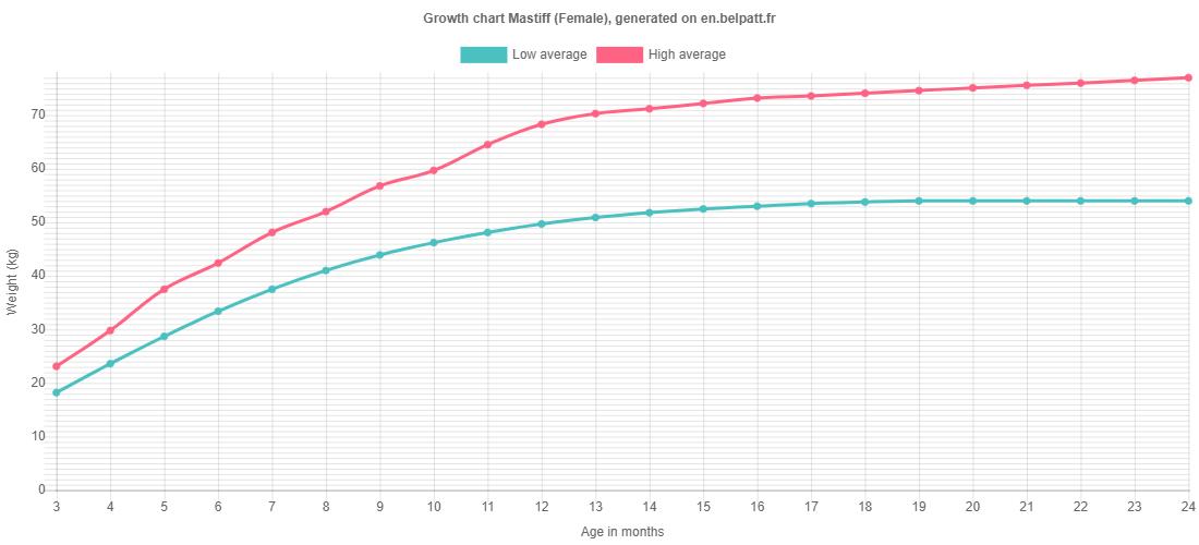 Growth chart Mastiff female
