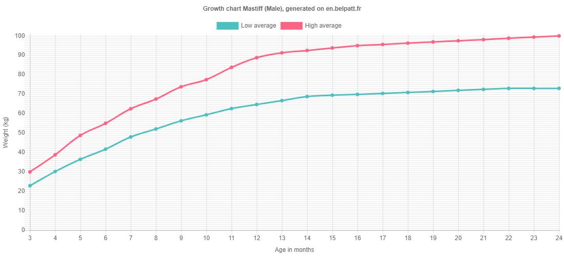 Growth chart Mastiff male