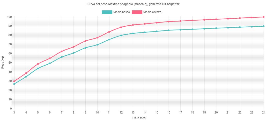 Curva di crescita Mastino spagnolo maschio