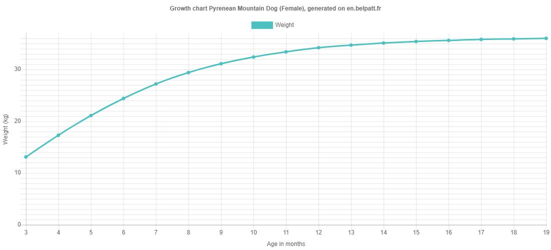 Growth chart Pyrenean Mountain Dog female