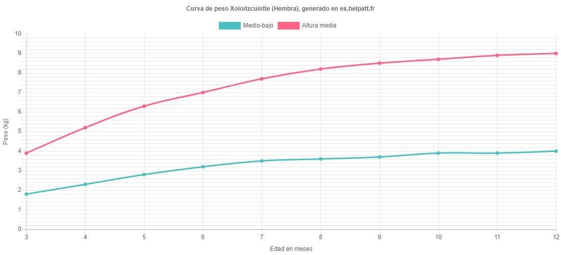 Curva de crecimiento Xoloitzcuintle hembra