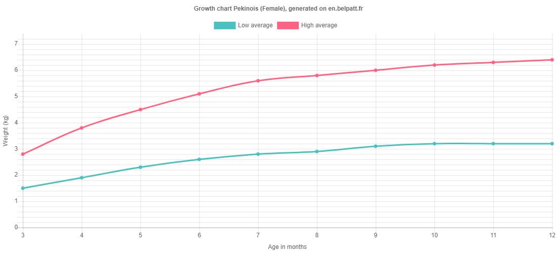 Growth chart Pekinois female