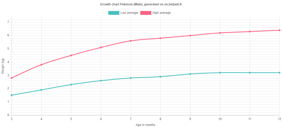 Growth chart Pekinois male