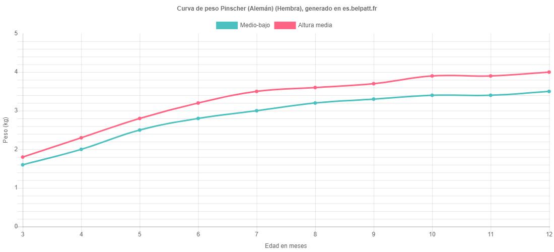 Curva de crecimiento Pinscher (Alemán) hembra