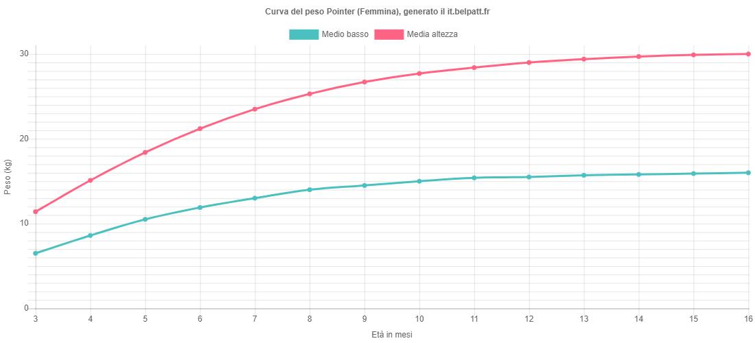 Curva di crescita Pointer femmina
