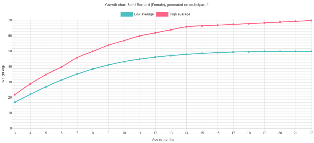 Growth chart Saint Bernard female