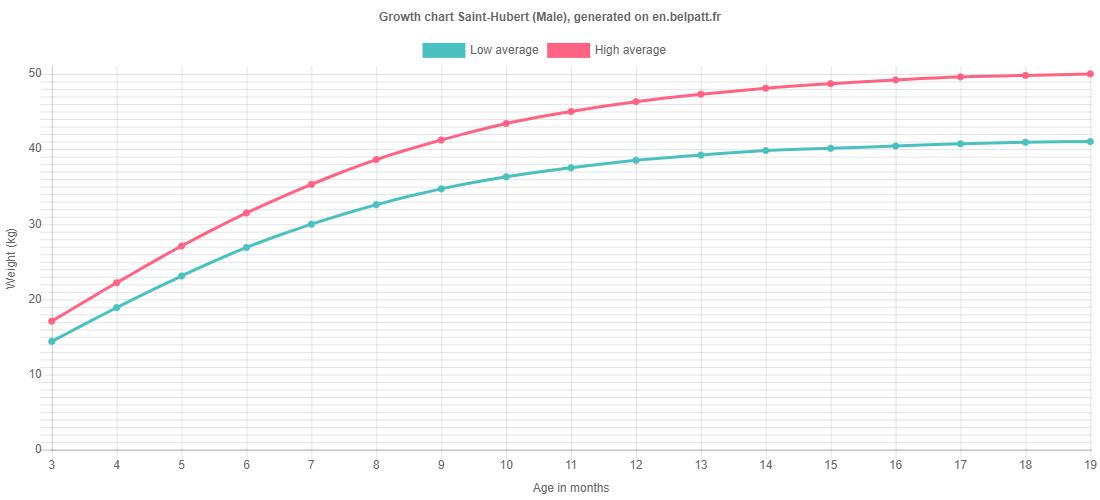 Growth chart Saint-Hubert male