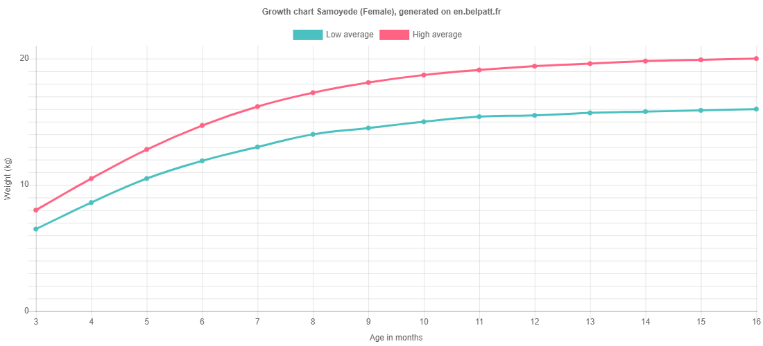 Growth chart Samoyede female