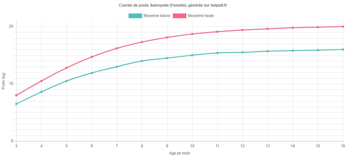 Courbe de croissance Samoyede femelle