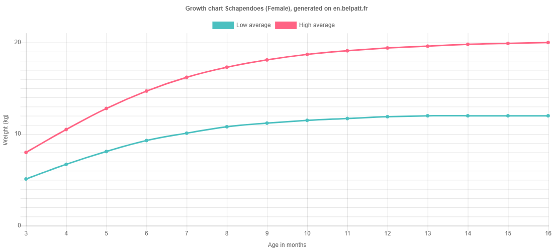Growth chart Schapendoes female