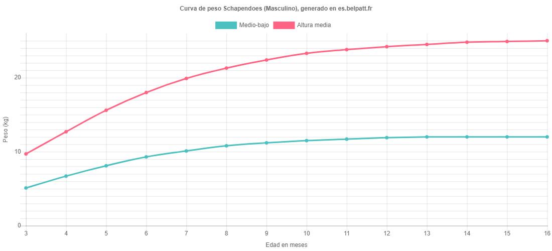 Curva de crecimiento Schapendoes masculino