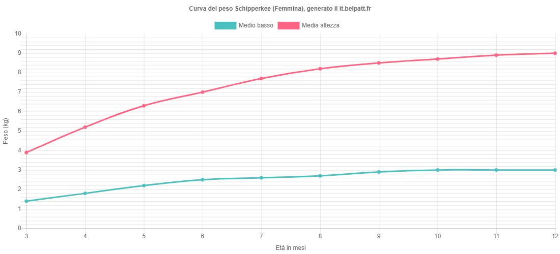 Curva di crescita Schipperkee femmina