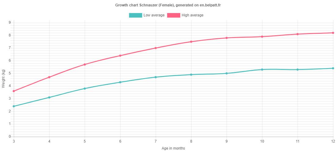 Growth chart Schnauzer female