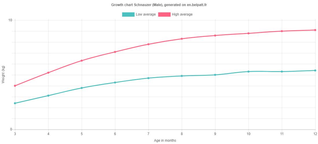 Growth chart Schnauzer male