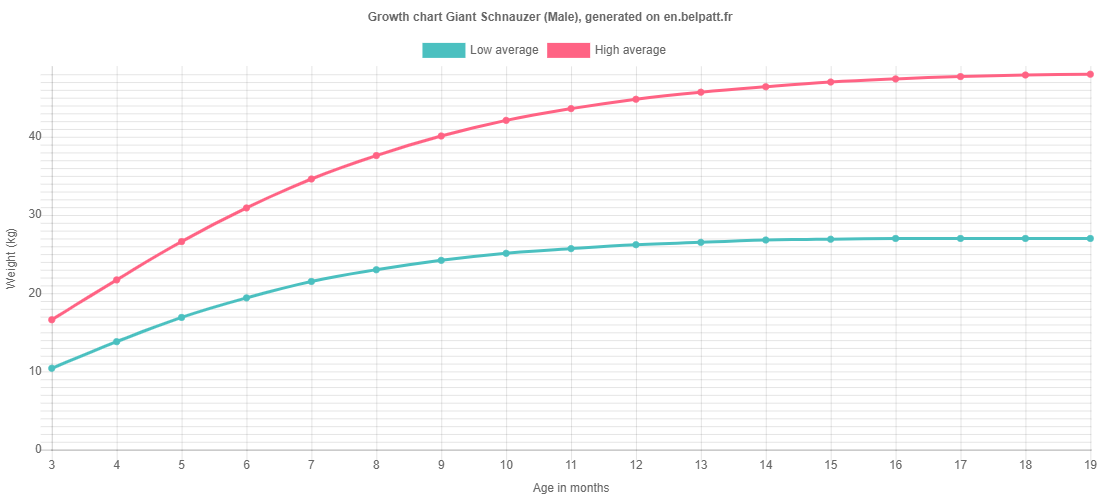Growth chart Giant Schnauzer male