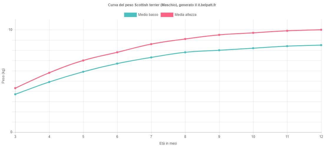 Curva di crescita Scottish terrier maschio
