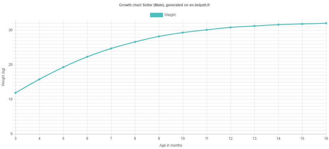 Growth chart Setter male