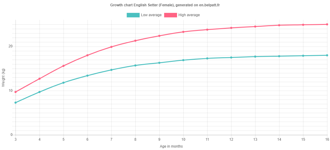 Growth chart English Setter female