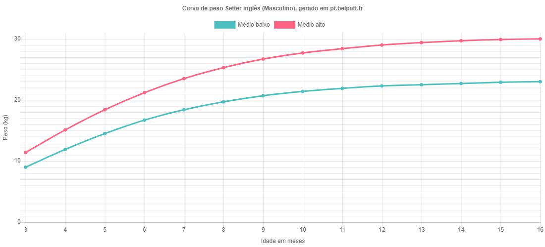 Curva de crescimento Setter inglês masculino