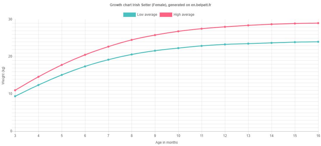 Growth chart Irish Setter female
