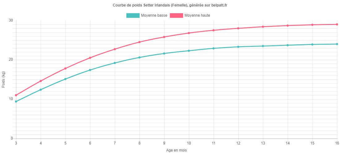 Courbe de croissance Setter Irlandais femelle