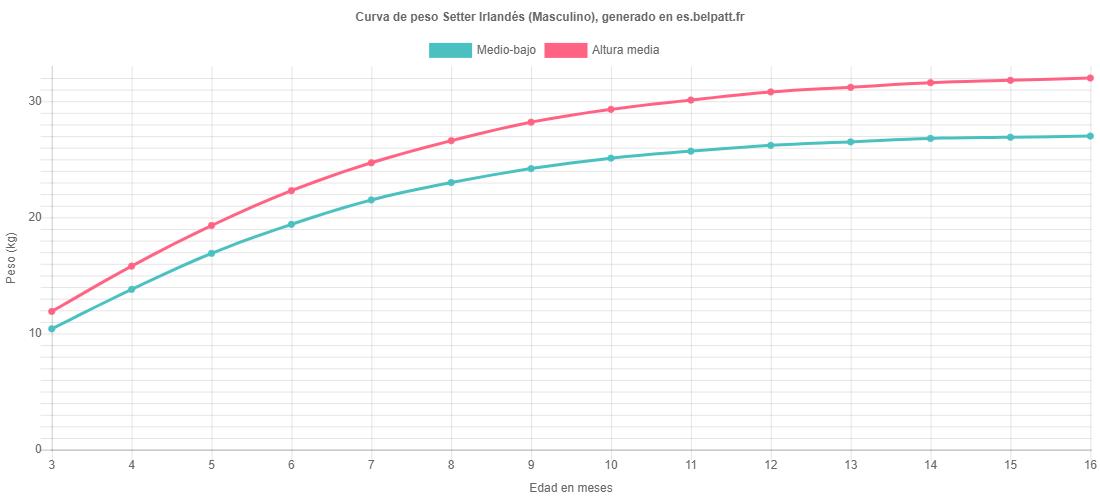 Curva de crecimiento Setter Irlandés masculino