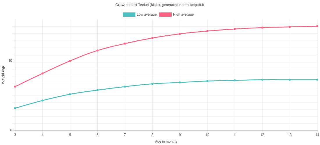 Growth chart Teckel male
